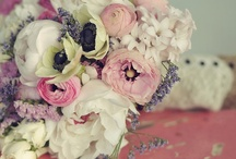 Wedding Ideas - For my kids / by Lydia Faulkner/ Lake City Designs, LLC