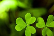 When Irish Eyes are Smiling / Everything to inspire A happy St Patrick's Day! Lovely  images of greens, parties, travel,food, clothes, Irish & and otherwise. Every wants to be Irish On St. Paddy's day!