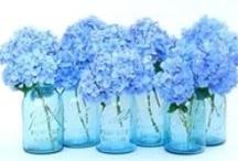 My Heaven is Blue