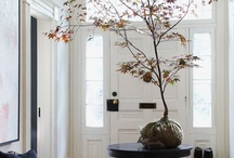 Fall decorating / by Judy Miller