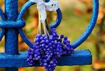 Azure, Cobalt, Cerulean Blue / by Melissa Mitchell