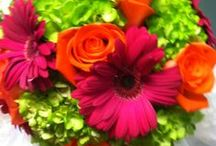 Wedding - Pink, Orange, & Green / by Nikki