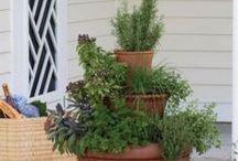 Home and Garden / Home & garden decor, tricks, etc