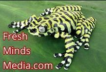 """Fresh Minds Media / A place for minds to reflect on fresh, innovative ideas. Featuring Ashley Berges syndicated show """"Perspectives"""". Get recordings from the website!  / by Fresh Minds Media"""
