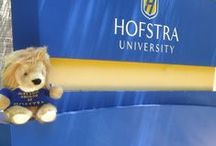 """Just Lion Around At Hofstra / A #funfriday #summertime series that features our cute stuffed animal, """"Lionel"""" just #lionaround various places at Hofstra and throughout Long Island. (Photographs taken by Michael O'Connor)"""