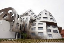 ARCHITECTURE - FRANK GEHRY