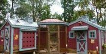 Duck n Chicken Homes / .