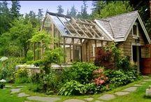 Green Houses / .