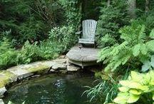 Ponds in a Garden / .
