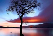 VERY . Truth . Light . Nature . Love . Peace.