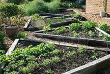 c)  yard & garden