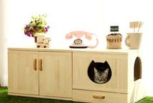 Paradise Living & Info for the Cats! / A collection to make your adorable cats lives fulfilling and fun!