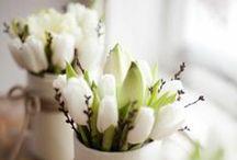 Mein Zuhause im Frühling / Der Winter geht vorbei, die dicken Jacken werden im Schrank verstaut und endlich wird alles bunt und hell, denn die ersten Blumen sprießen wieder. Wir freuen uns auf den Frühling und teilen unsere Wohnideen mit euch.
