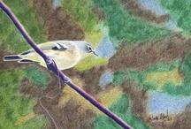 Artwork-Color Pencil / Art work done in Color pencil