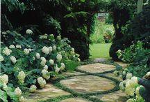 Exteriors - Gardens / Renae Clough