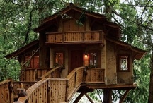 Treehouse Desire and Tiny House Designs / by Roberta Zyduck