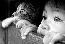 Soooo cute / Animals, kids, cute stuff