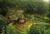 Garden /