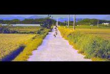 my work_video / suhyouri