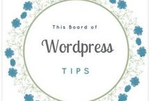Wordpress Tips / This board collact all Wordpress Tips around the Pinterest that help me building my blog.
