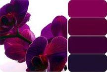 I. Color & Jewel Tones / by Kristin Elle
