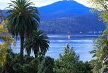 Tasmania / by Froggie