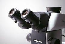 Mikroskopy / Najpiękniejsze zdjęcia mikroskopów