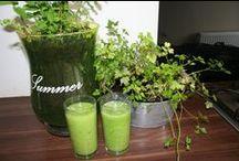 Zo eet je gezond / Vind recepten en inspiratie uit de artikelen van Lekker & Gezond