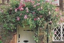 ~Rose Archer Cottage~ / Pin as many as you like