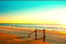 Love the Gold Coast