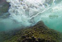 Mar / Lo mejor desde el fondo del mar