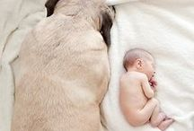 Kids & Pets / Beautiful shots of kids with their favourite pets!