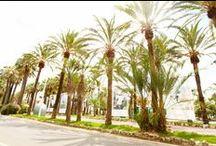 Vacances  / Quel plus belle endroit que Cannes et sa Croisette pour passer des vacances de rêve sous le soleil !