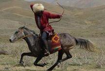 Mongol/Turkish
