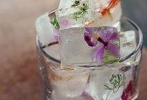 FOOD - Drinks / Inspirações de bebidas e coquetéis, alcoólicos ou não.