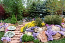 Gardens: Landscaping (Concepts) / Use of foliage and flowers in various garden styles and locations.  / by Eddie Alvarez