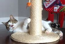100% Sisal Large & Chunky Cat Scratching Post / Our original Cat Scratching Post and still the most popular by a Country Mile (as we say here in Devon). This large Cat Scratching Post is strong, chunky, heavy and very sturdy. Suitable for even the biggest cats, this is probably the best Cat Scratching Post made in the UK. To buy yours visit www.scratchycats.com