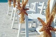 Wedding Chairs / Wedding chairs decoration