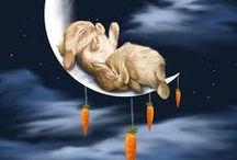 Kaninenes store verden / Ferdige resultater og inspirerende ideer