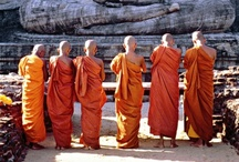 **Monks** / by Renette Rauch