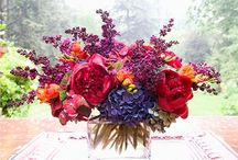Flowers - Bright / Floral arrangements in bright colours.  / by Sarah-Lou