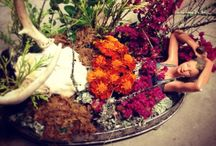 Artsy Insight: Ladytown Mystic by Christine Lucas / Botanical compositions for your sacred spaces.