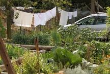 GARHOF Gardening