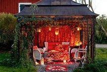 Garden Ideas & Sheds