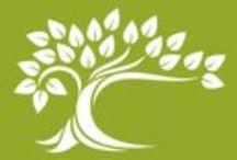Topboomzorg / Via Topboomzorg verzorg ik bomen in particuliere tuinen.  Van rooien tot snoeien. Van advies tot stormschade herstel.  kijk ook op www.topboomzorg.nl