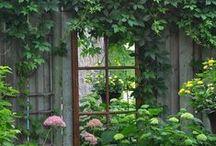HOME garden inspirations