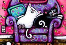 gatti, cat, gatos, miao