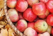 mele, apple, pommes / piacere