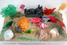 A House for Hermit Crab by Eric Carle - Ivy Kids Kit July 2015 / In July's Ivy Kids kit you receive A House for Hermit Crab by Eric Carle and over 10 activities inspired by the book.