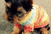 For Pets! / Knit and crochet projects for your favorite fur-ball!